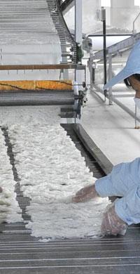 聚寶金昊農業高科有限公司
