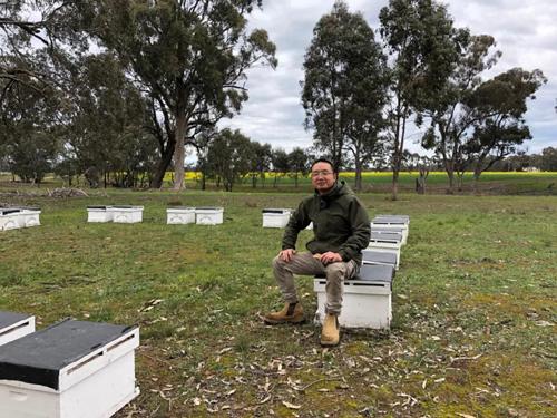 國際蜂情 | 澳大利亞養蜂見聞(六)