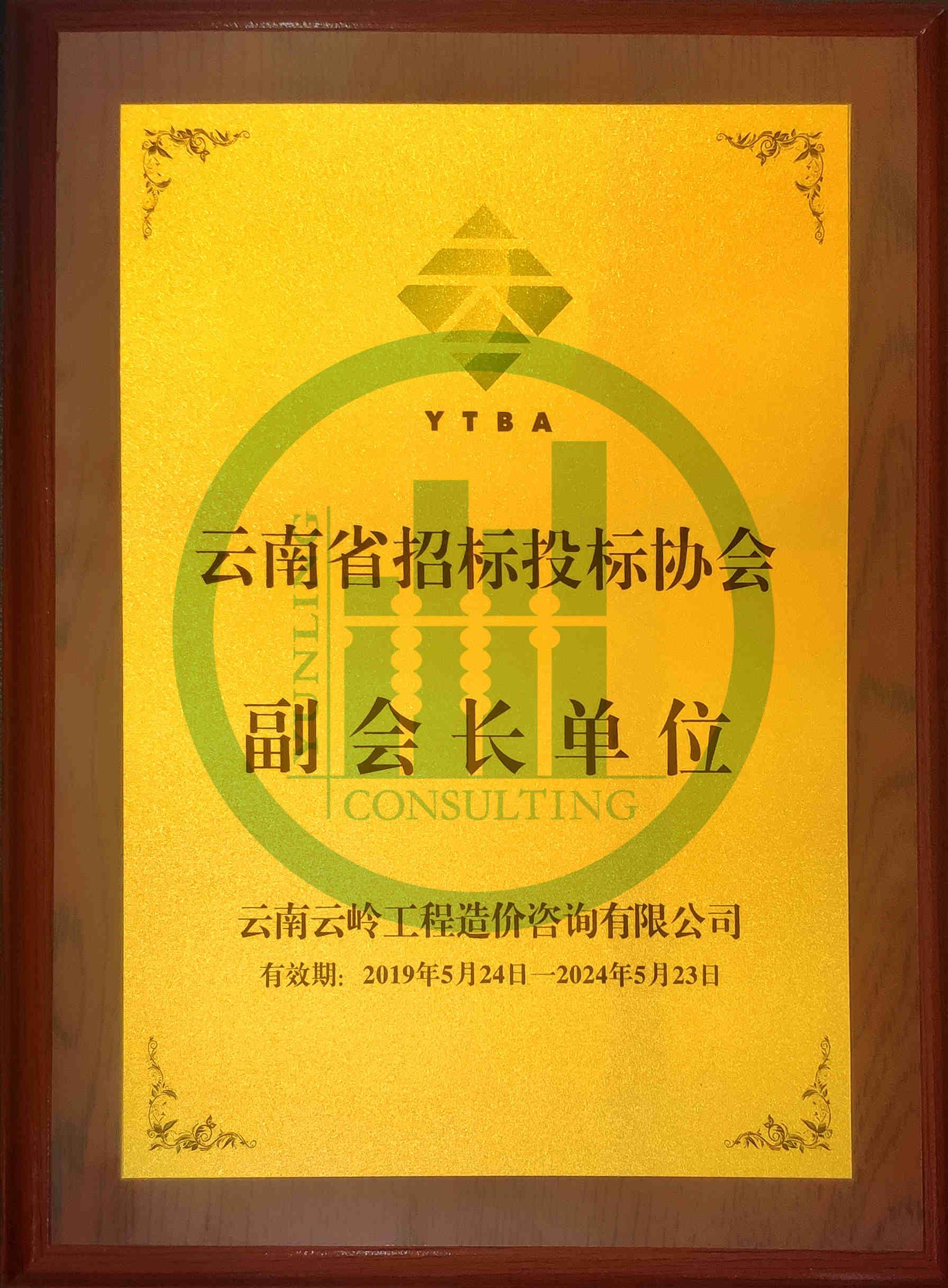 云南省招投標協會副會長單位