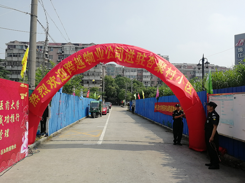 杏聚村進場圖片