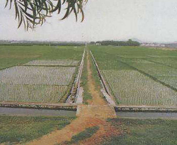 2016年嘉鱼簰洲湾镇沙湖灌区、接兴灌区第二标段