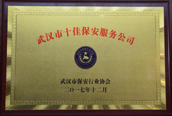 2017年武汉市十佳保安服务公司