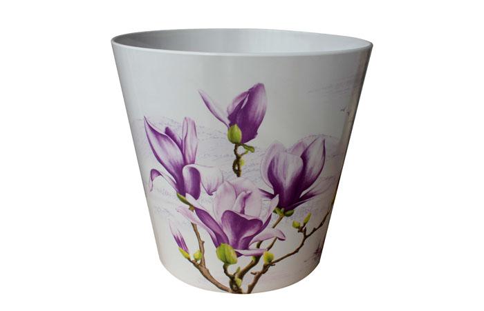 LJ-2021紫沁木兰