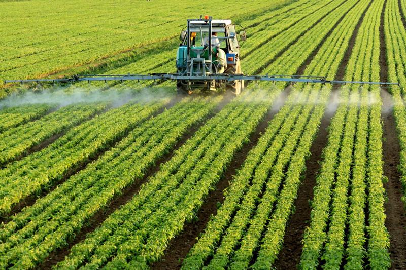 化肥依賴癥不能怪農民