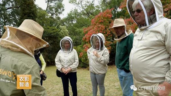 CCTV《每日農經》  探秘澳大利亞養蜂秘訣(葆春澳洲專題下)